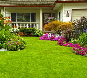 Simply Landscaping