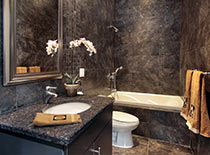 dark regal bathroom