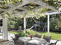 pergola with hanging vines