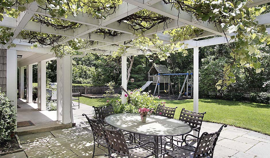 patio with vine growing in awning